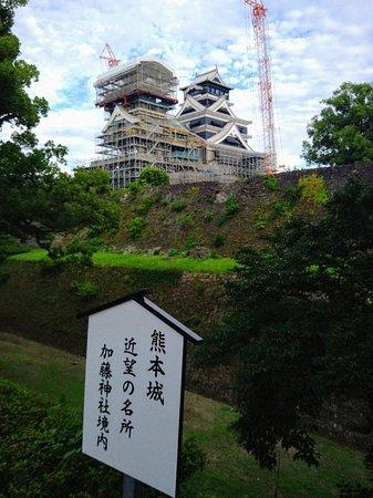 熊本城がよく見える
