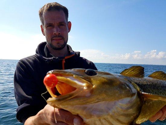 """Angeln vor Schleimünde / Maasholm auf der Ostsee. Mit Spass und Freude, mit der Familie im Urlaub. Hochseeangeln auf der Ostsee auf Dorsch, Plattfisch, Seelachs, Hering, Hornhecht und mehr Meeresfische auf der """"Soulmate""""."""