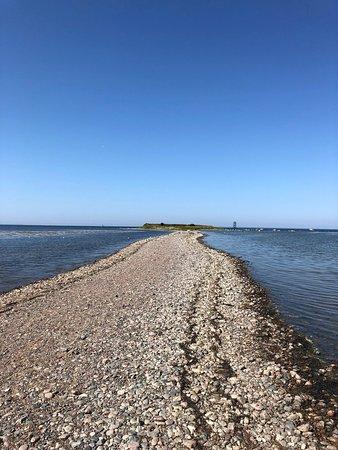 Condado de Harju, Estonia: Astonishing bar on the Baltic sea to Pandju Islet, home of the birds. Please respect the rules and times for nesting period.