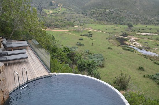Bush Villas Botlierskop: Main Lodge Pool and view