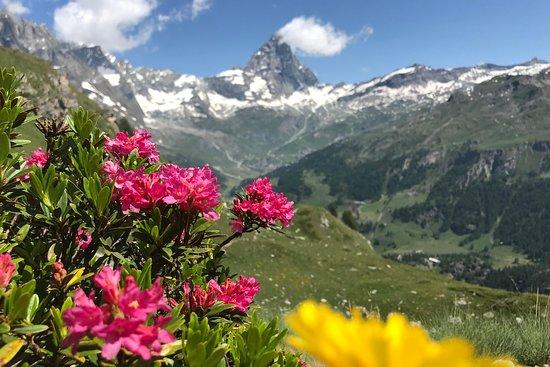 Hình ảnh về Aosta