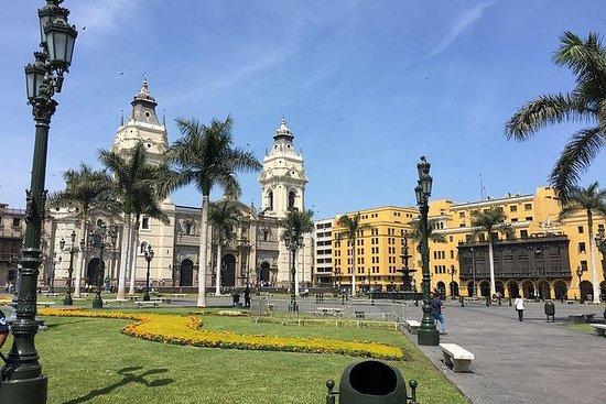 8小时:利马城市观光,烹饪课,市场观光和异国水果(小组)