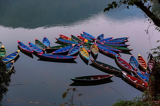 Full-dagers Private Pokhara City Tour...
