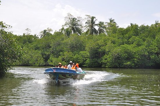 Private Day Tour: Madu River Boat...