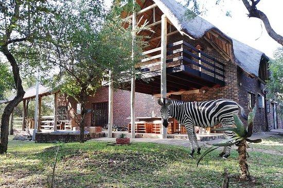 Kruger Park Lodge Safari
