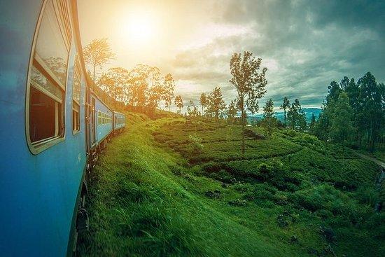 Sri Lanka turpakke om 05 netter 06...
