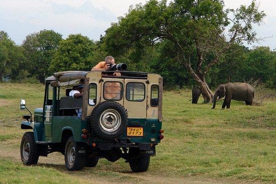 ショアエクスカーション:ハンバントタ港からのウダワラウェ国立公園プライベートサフ…