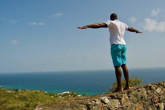 The Whole Island Tour