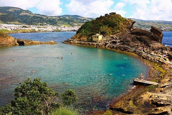 Baleines et dauphins + îlot Vila...
