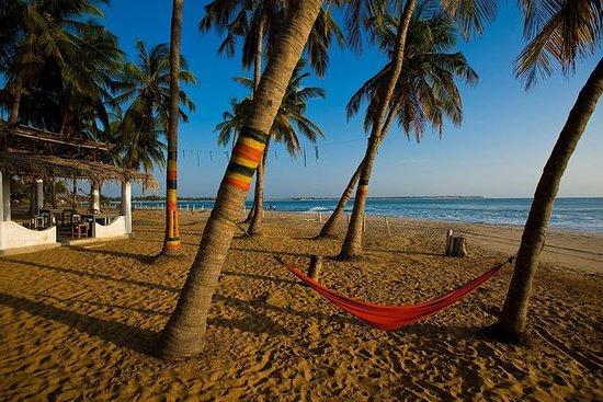 Kandy til Arugam Bay 3-dagers...
