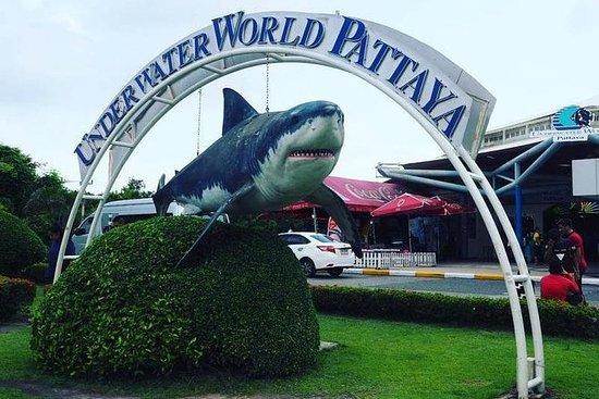 PATTAYA: Unisciti al Tour Under Water