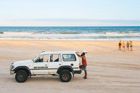 Dingo的2天高级弗雷泽岛4WD Safari
