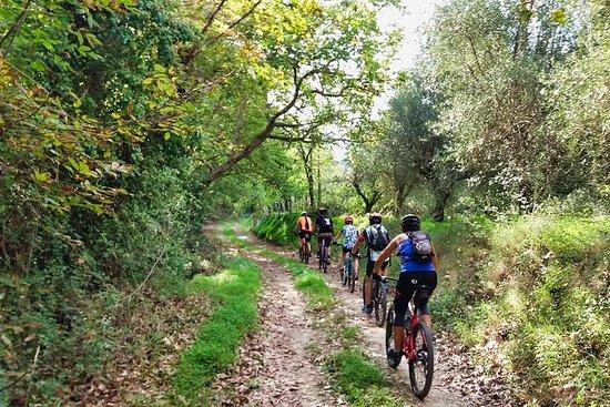 山地自行车之旅 - 探索大自然,体验正宗的克里特岛。