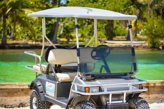 Avis Golf Cart Rental LTD (Island...