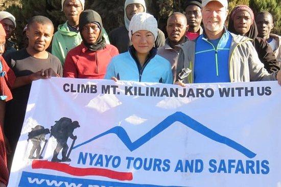 Marangu Waterfalls Day Trip