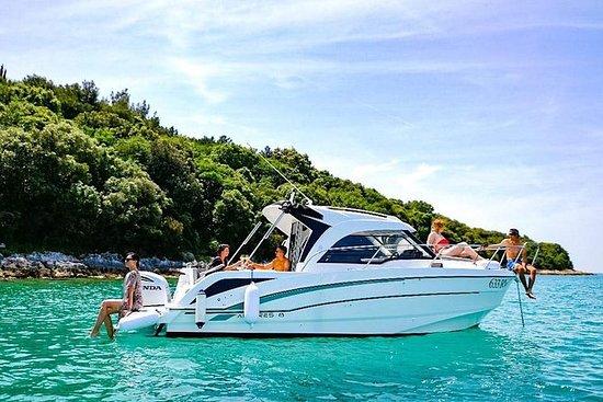 私人旅游:罗维尼群岛群岛和林峡湾