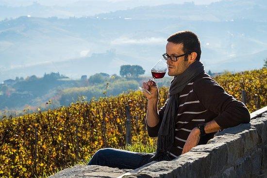 Barbaresco Weintour, 1 Tag