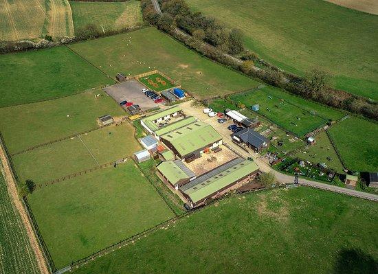 National Animal Welfare Trust Berkshire