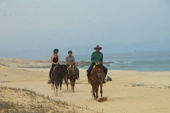 Cabo San Lucas Horseback Beach Ride: Intermediate and Advanced Levels: Great Views!