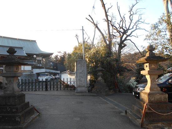 Taisei-ji Temple