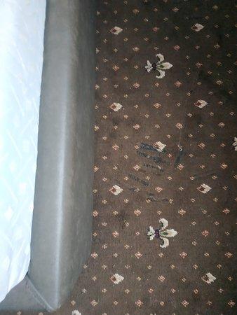 Кошмарный отель и испорченый отпуск