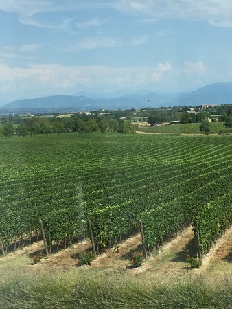 Montonale: The view from the wine-tasting room