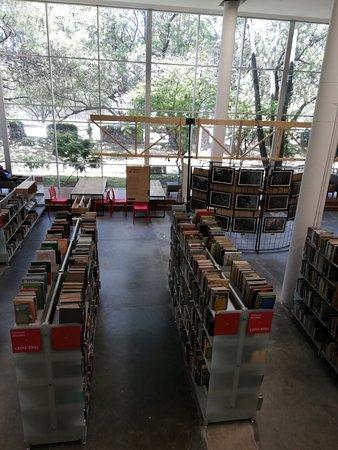 Biblioteca Publica Piloto