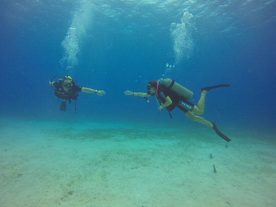 Diving Dominican Republic (Bayahibe) - 2019 All You Need to Know