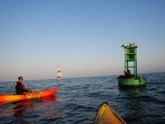 Sunset & Moonrise Kayaking: Making friends
