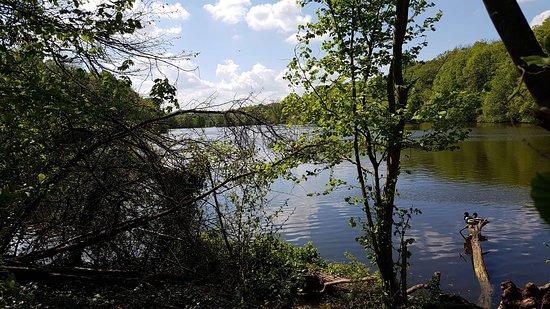 Coye-la-Foret, Frankrike: Un étang