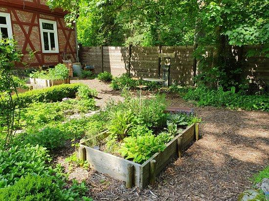 Konigslutter, Saksa: Anliegender Kräutergarten