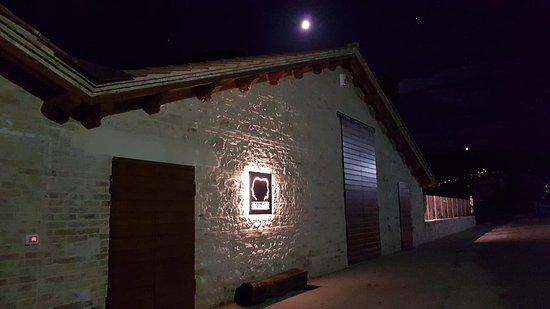 Macciano, Italie : Esterno notturno Agricadd Società Agricola Srl - Oro di Giano.  Azienda agricola con produzione e vendita diretta olio, legumi e cereali coltivati direttamente.