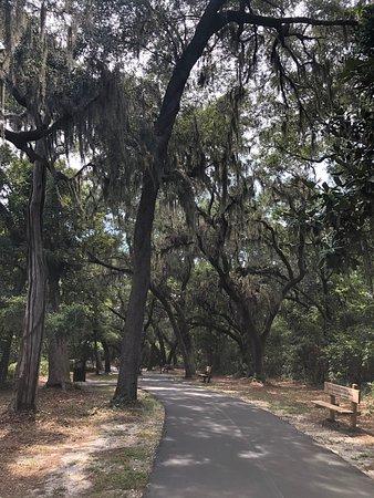 Hugh S  Branyon Backcountry Trail (Orange Beach) - 2019 All