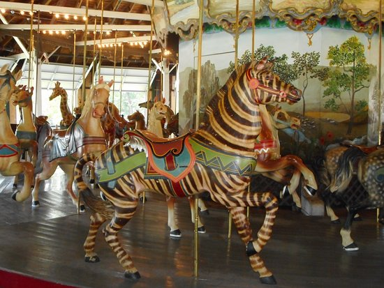 Pen Argyl, PA: The zebra on the Weona Park carousel.  While some zebras were put on later Dentzel carousels, this older looking zebra would have been quite rare.