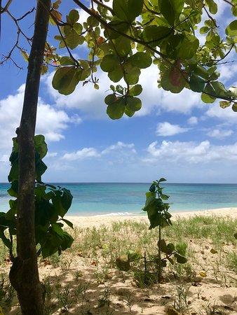 Valokuva: Starfish Discovery Bay