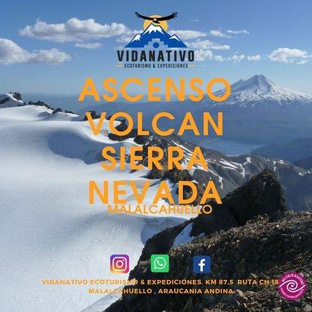 VidaNativo Ecoturismo & Expediciones