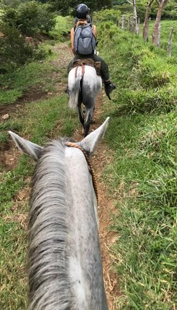 Best horseback riding vacation in Costa Rica