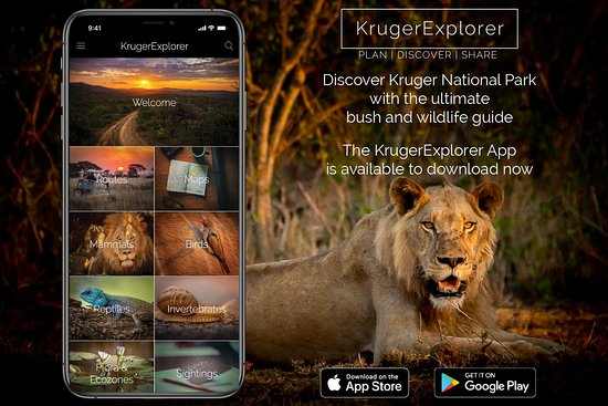 The KrugerExplorer App