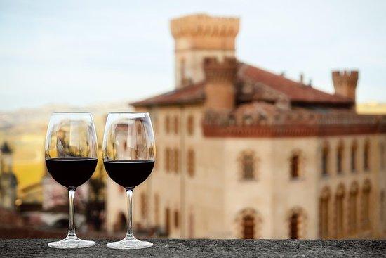 巴罗洛葡萄酒之旅,1天