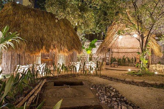 Mayan Food Experience
