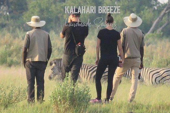 1-daagse Okavango Delta Volledige ...