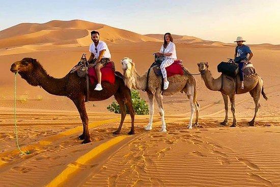 キャメルトレッキングツアー一晩砂漠キャンプメルズーガ砂漠Erg Chebbi…