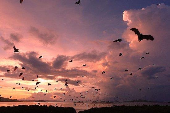 Coucher de soleil sur l'île de Komodo