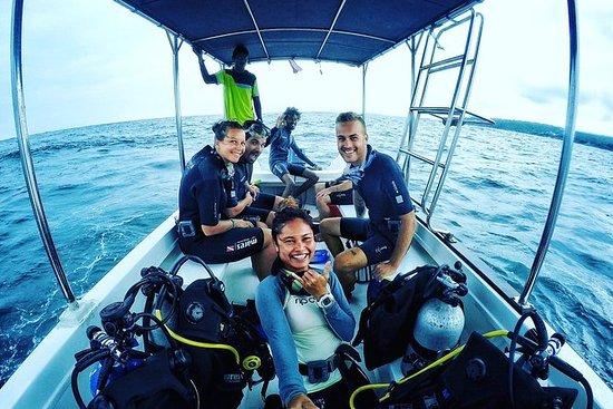 Oppdag SCUBA-dykking i den vakre...