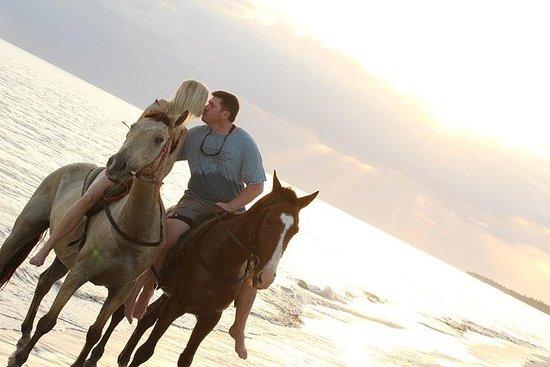 Reittour: Horseback Riding Tour