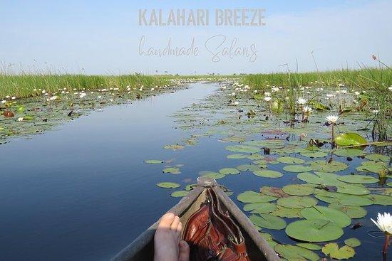 3-daagse Inner Okavango Delta Safari ...