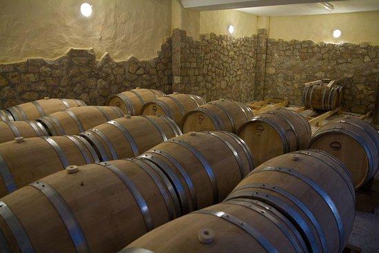 Trilofo, Griekenland: Domaine Florian cellar