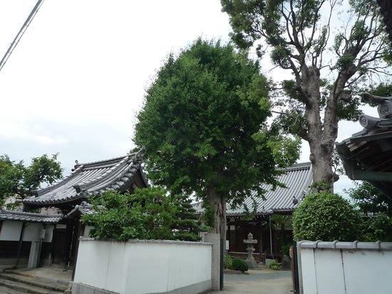 Sonju-ji Temple