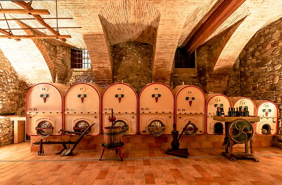 Pozzolengo, إيطاليا: Antica cantina interrata oggi adibita a sala degustazioni