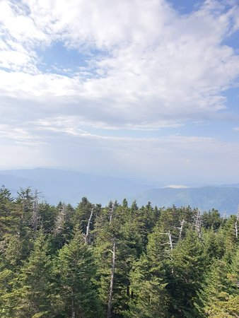Clingmans Dome Great Smoky Mountains Nationalpark Aktuelle 2021 Lohnt Es Sich Mit Fotos